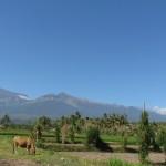 Der Rinjani Vulkan aus Entfernung
