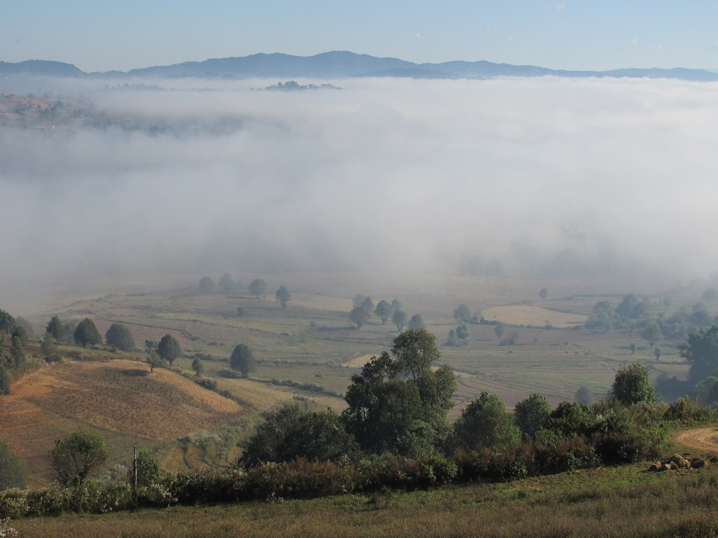 ...mit dichtem Nebel.