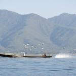 """""""Longtailboote"""": Laut, stinkig und verbreitet."""